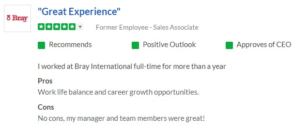 """A review of working at Bray International on Glassdoor.com that says """"Great experience"""""""